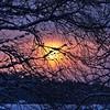 100mm sunset (Stefano Rugolo) Tags: stefanorugolo pentax k5 pentaxk5 smcpentaxm100mmf28 sunset colors branches tree landscape sky snow hälsingland sweden sverige silhouettes clouds crop vintagelens primelens