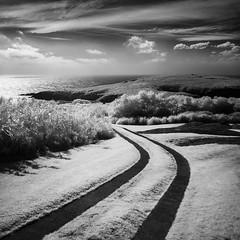 Path to Montague (arun_sen) Tags: nsw australia blackandwhite coast infrared island montagueisland rocks sapphirecoast seascape water