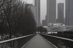 To the parks (aerojad) Tags: eos canon 80d dslr 2018 winter outdoors chicago snow snowing cold cityscape streetphotography streetscape millenniumpark grantpark artinstituteofchicago