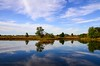 composition by nature (lvphotos!) Tags: landscape reflection pond water sky clouds blue white green colors beautiful peaceful nature outdoor trees stillness