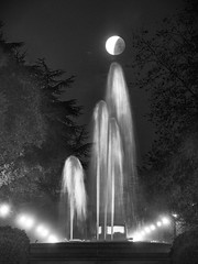 I'm not giving up on you (PeterThoeny) Tags: stanforduniversity paloalto california siliconvalley sanfranciscobay sanfranciscobayarea night moon supermoon bloodmoon bluemoon fullmoon lunar eclipse lunareclipse partialeclipse outdoor sky clear water waterfountain fountain monochrome blackandwhite sony sonya6000 a6000 tamron tamronsp150600mmf563 1xp raw photomatix hdr qualityhdr qualityhdrphotography fav100