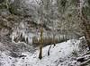 P1090234_HDR (focus73) Tags: lumix dmcfz300 cascades waterfall wasserfall chartreuse savoie hiver givre glaçons
