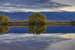 Looking East From Farmers Pond (RStonejr) Tags: us395 morning 80d canon easternsierra california bishop farmerspond pond reflection reflect nature tree trees water blue yellow mountains sunrise new light sky me sunlight outside flickr unofficial idk rossstone ross stone green