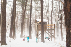 Treehouse (trois petits oiseaux) Tags: treehouse fog kids childhood