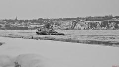 Remorqueur, tug, Québec, Canada - 4656 (rivai56) Tags: villedequébec québec canada ca remorqueur tug tugboat river glace noiretblanc black white hiver winter remorqueurdanslesglaces hiverduquébec