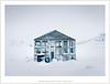 Icelandic Greenhouse in Winter (mistymornings99) Tags: skutustadir iceland greenhouse farm