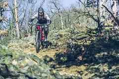 2018.02.25. Borsberg MTB-6 (Michael_Topp) Tags: fahrrad mountainbike himmel licht dresden sony nex