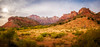 Zion Vista - Textured HDR (byron bauer) Tags: byronbauer zion nationalpark valley canyon mountain sandstone cliff rock sky clouds sun utah landscape vista view texture painterly topaz simplify bird grass scrub rise hdr highdynamicrange panorama pano 5exp redrock trees
