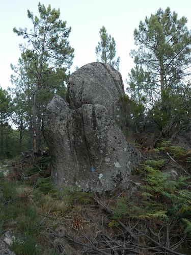 P1060263
