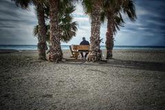 Pequeño oasis. (pepetimarjazz) Tags: salobreña betweenpalmtrees spectators beach contemplatingthescenery goodday relaxingtime photography landscape olimpus omd 17mm ilike lovethiscity