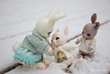 2018jinju-family08 (Nathy1317) Tags: ウサギ 兎 雪 冬 lapin neige hiver extérieur cocoriang peppi tobi animal