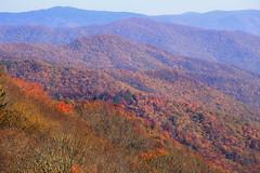 IMG_3646_Smoky Mountains (Alex Hsieh (椰子人)) Tags: ç´è² smokymountains smokymountainsnationalpark nationalpark roadtrip travel northcarolina tennessee tn usa canon canon6d 6d 2016 fall fallfoliage foliage autumn