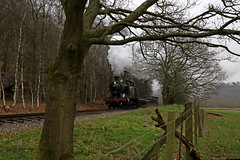 Churnet Valley railway (Andrew Edkins) Tags: tree 4277 42xxclass basford churnetvalleyrailway railwayphotography freighttrain preservedrailway steamtrain 280 canon geotagged goodstrain 30742charter frame january 2018 winter staffordshire england uksteam fence light gwr tankengine