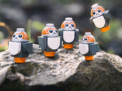 Porg Family (jezbags) Tags: lego star wars porg family starwars toy toys legos legostarwars bird seabird rock macro macrophotography macrodreams macrolego canon canon80d 80d 100mm closeup upclose lastjedi