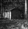Forest barn (Rosenthal Photography) Tags: rolleiflex35f asa125 landschaft 6x6 anderlingen wald natur ilfordfp4 hütte mittelformat städte 20171205 rodinal150 dezember ff120 analog winter dörfer siedlungen landscape nature forest trees barn december way path track pathway rollei rolleiflex 35f f35 sk schneiderkreuznach xenotar 75mm ilford fp4 fp4plus rodinal 150 epson v800