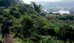 em algum lugar na estrada... (Ruby Ferreira ®) Tags: linhadetrem rioparaíbadosul river forest road train line túnel trainline estrada viadutra montains montanhas