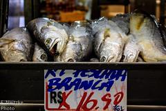 35 Mercadão (faneitzke) Tags: portfolio canon canont5eos1200d canont5 sãopaulo sp sampa brasil brazil brésil américadosul américalatina southamerica latinamerica ameriquelatine latinoamérica americadelsur sudamerica mercadomunicipal mercadão mercado citymarket marché centro centrovelho peixe peixes poisson fish seafood frutosdomar fruitsdemer marisco