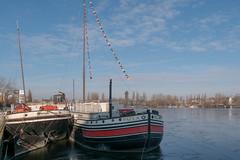 Berlin: Alte Frachtkähne am Ufer der Halbinsel Stralau - Old freight barges have moored at the shore of Rummelsburg Peninsula (riesebusch) Tags: berlin friedrichshain stralau
