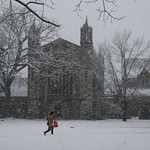 263/365/3550 (March 1, 2018) - Law Quad On a Snowy Winter's Day in Ann Arbor at the University of Michigan (March 1st, 2018) thumbnail