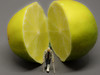 216/365 - Run for your life (Andreas1104) Tags: 2018 macro monday citrus preiser little people