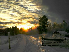 "New Year means New Start and New Purposes, or ""Keep Up The Good Work, Eva"" (evakongshavn) Tags: 7dwf newpurposes intuition sunset landscape landschaft paysage snow neige hivernal hiver winterish winterwonderland winterlandscape wonderlandscape wonderfulworld wordsofwisdom wonderland woodland postcardsfromtheworld exploretheworld norge norsknatur norway fences gates frozen frost cold sundaylights winter blahblahscape lifethroughahole"
