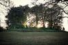 Bronze age earthwork : London (AJ Mitchell) Tags: richmond richmondpark london britishisles sunset earthwork bronzeage prehistoric mound kinghenrysmound