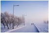 2018-01-23 SPb, Finland gulf, frost 196 (Mandir Prem) Tags: outdoor places stpetersburg brige city colour finlandgulf frost frozen horizon ice landscape nature postcard russia saintpetersburg snow sunset travel tree winter