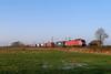 P1440602 (Lumixfan68) Tags: eisenbahn züge güterzüge loks baureihe eg 31 sechsachser deutsche bahn db cargo scandinavia elektroloks drehstromloks