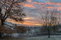 2__.jpg (Nu Mero) Tags: coucherdesoleil nature valléedevillé paysage leverdesoleil sunrise sunset neuveéglise grandest france fr