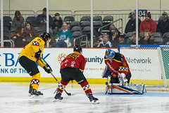 "2018 ECHL All Star-1252 • <a style=""font-size:0.8em;"" href=""http://www.flickr.com/photos/134016632@N02/39076719914/"" target=""_blank"">View on Flickr</a>"