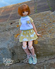 25 (Welt Der Puppen) Tags: dd dollfie dream dynamite dddy blythe blythes azone doll dolls collector anime leone akame ga kill pure neemo