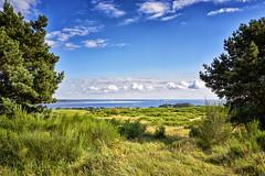 über die Insel zur Ostsee (danielrudolf.pics) Tags: sundown tropical idyllic peaceful paradise coconut tree tranquil sunshine soufriere sunrise calm horizon mv mecklenburg vorpommern hiddensee insel ostsee himmel wolken weis blau wiese