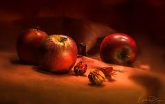 Mela Gava (Lucie van Dongen) Tags: macro long exposure apples light primerplano composition artwork artistic still life naturemorte fruit fruits healthy red blur background nikonmacrolens105mm