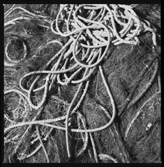 nets and ropes (ukke2011) Tags: hasselblad503cw planarcfe8028 foma100classic selfdeveloping rodinal 150 film pellicola 6x6 square 120 bw blackandwhite mediumformat analog analogico ropes cime reti nets harbor porto