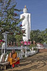 A moment's peace (bag_lady) Tags: standingbuddha buddha statue buddhisttemple srilanka sigirya monk buddhism buddhist sittingintheshade amomentspeace peaceful