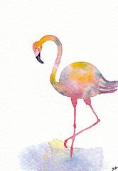 """ACEO 74 """"Flamingo"""" (Sonia Aguiar (Mallorca)) Tags: watercolor watercolour wallart smallart flamingo aquarell aquarelle aceo acuarela atc miniatureart"""