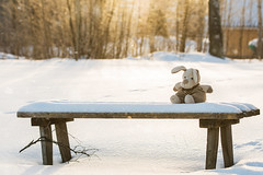 The bench (mirri_inc) Tags: winter toy bench bokeh sun cold