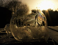 The Full Bubble..x (Lisa@Lethen) Tags: bubble freeze frozen ice morning frosty cold freezing