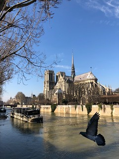 Notre Dame de Paris ~ MjYj