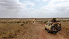 Safari-Tsavo Natinal Park-Kenya (10) (johnfranky_t) Tags: johnfranky t panasonic tz40 fuoristrada 4x4 toyota ruote di scorta savana pista sassi cespugli bush tettino tsavo national park kenia targa landscape wheels pebbles track roof grass plate