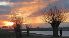 Cold Sunset (daaynos) Tags: sunset colors colours cold willows woman water river riverside sky clouds winter trees landscape holland hoeksewaard dehoekschewaard