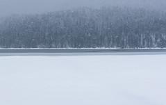 Cerknica Lake (happy.apple) Tags: otok cerknica slovenia si cerkniškojezero cerknicalake intermittentlake presihajočejezero winter snow snowstorm sneg zima slovenija geotagged