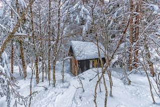 La petite maison dans... la forêt - La Féclaz - Savoie (2018)