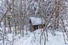 La petite maison dans... la forêt - La Féclaz - Savoie (2018) (gerardcarron) Tags: 1022 arbre arbres cabane canon80d feclaz hiver hut landscape massifbauges nature neige paysage savoie snow foret forest