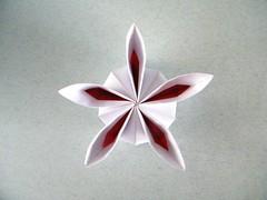 Rosette (variation) - Ekaterina Lukasheva (Rui.Roda) Tags: origami papiroflexia papierfalten flor fleur flower modular rosette ekaterina lukasheva