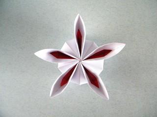 Rosette (variation) - Ekaterina Lukasheva