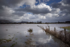 Flood - 24 Jan 2018 - 31 (ibriphotos) Tags: kildeanloop snowmelt january flood wallacemonument river water stirling riverforth fvcsteps winter