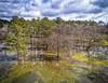 Aerial Shot of Bear Creek Park (runcolt12) Tags: houston texas unitedstates us bearcreekpark bayou creek cypresstree drone dji phantom4pro