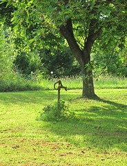 Country Living--The Pump (David V. Hoffman) Tags: pump water necessity rural country metal handle spout lawn field grass summer heat lush vegetation comfort tranquil still quiet peaceful charlottecourthouse charlottecounty virginia