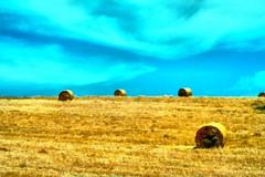 Alentejo | Алентежу (António José Rocha) Tags: portugal alentejo planície seara ceifa rolos cores amarelo azul beleza aoarlivre
